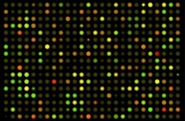 An example of DNA microarrays, used in cancer (and other diseases) research. &copy Alila Medical Media